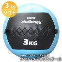 ソフト・メディシンボール《3kg》マニュアル付属 筋トレと体幹トレ同時に鍛錬 陸上・球技・格闘技・フィットネスにも