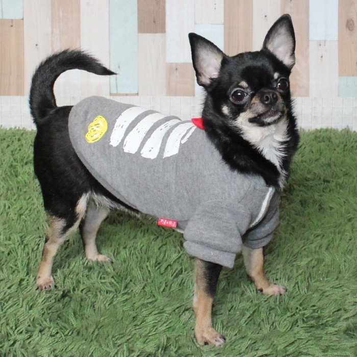 ドッグウェア 裏ボア トップストレーナー 犬服 ペット用ドッグウェア 小型犬 中型犬 チワワ ヨーキー パピヨン 柴 ビーグル S・XL ペット用 トップス 犬服 裏ボア リボン 秋冬 トレーナー kr209