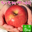 訳あり 小玉 りんご サンふじ 約5キロ 20〜27玉 5kg 等級D 送料無料 葉とらず 信州りんご 減農薬 長野県産 産地直送