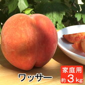 ワッサー等級a(贈答用)3kg/送料無料桃もも長野から産地直送夏ギフトお中元