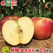 秋映等級B(家庭用)3kg9〜15玉/送料無料葉とらず味極みりんご減農薬長野県産産地直送