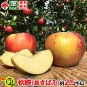 10月上旬より 訳あり 信州りんご 秋映 約3キロ およそ7〜15玉 3kg 等級C 送料無料 葉とらず 減農薬 長野県産 産地直送