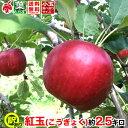 ご予約受付中 家庭用 りんご 紅玉 約3キロ およそ7〜12玉 等級B 3kg 送料無料 葉とらず 信州りんご 減農薬 長野県産 産地直送