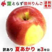 ご予約受付中家庭用夏あかり3キロ7〜12玉希少品種信州りんご等級B3kg送料無料数量限定