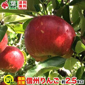 ご予約受付中 復興支援 家庭用 葉とらず りんご 約3キロ 7〜12玉 3kg 等級B 減農薬 長野県産 産地直送