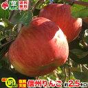 ご予約受付中 復興支援 訳あり 葉とらず りんご 約3キロ およそ7〜12玉 3kg 等級C 傷サビあり 訳あり 減農薬 長野県産 産地直送