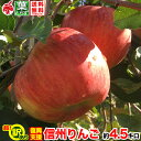 ご予約受付中 復興支援 訳あり 葉とらず りんご 約5キロ およそ12〜20玉 5kg 等級C 傷サビあり 訳あり 減農薬 長野県産 産地直送