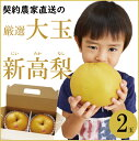 【送料無料】【産地直送】新高梨 梨 なし 和梨 大きい 大玉