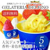 【送料込】自然派ジェラート5個セット【RCP】【特価アイスクリーム】●