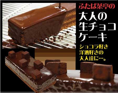 【送料無料】 大人の生チョコケーキ 1本 (3?4名分) 生チョコ/ケーキ/チョコレートケーキ/誕生日/ギフト