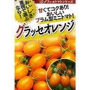 トマト(ミニトマト) 種 【グラッセオレンジ100粒】