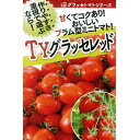 トマト(ミニトマト) 種 【TYグラッセレッド100粒】