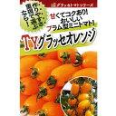 トマト(ミニトマト) 種 【TYグラッセオレンジ1000粒】