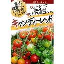 トマト(ミニトマト) 種 【キャンディーレッド100粒】