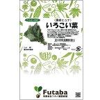 葉野菜(濃緑ヒユナ) 種 【いろこい菜 小袋】