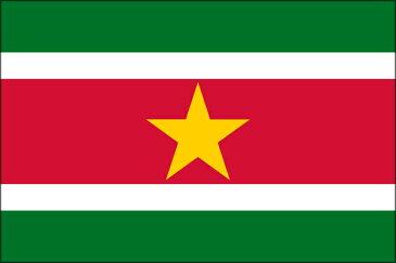 【卓上旗】スリナム共和国(羽二重正絹製) サイズ:15.5×22cm【領収書発行】