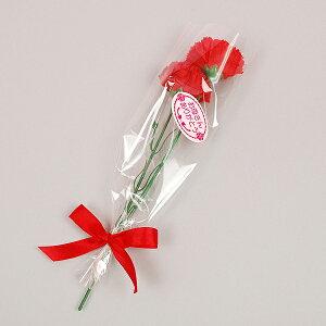 【母の日の造花】贈答用カーネーション 母の日【領収書発行】【あす楽対応_東北】【あす楽対応_関…