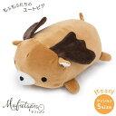 【敬老の日ギフト】Mofutopia モフトピア2 Sサイズ...