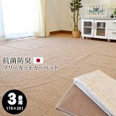 日本製 カーペット 3畳 フリーカット 抗菌 加工 平織り ラグ 江戸間 3帖 176×261cm 絨毯 ラグマット 国産