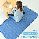 接触冷感 一畳ルームマット 約170×80cm ひんやり ごろ寝 夏用 お昼寝マット ラグマット カーペット 洗える 送料無料