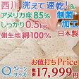 【今だけ枕カバー付 4/27正午まで】『東京西川×主婦がうれしい!』ダウン増量0.5kg!部屋干し対応商品。夏用 羽毛布団 羽毛肌掛け布団 クイーン 日本製 洗える アメリカ産ホワイトダウン85% 西川産業 綿100%