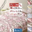 24H限定P5倍26日9時迄&100円クーポン★ 毛布 シン