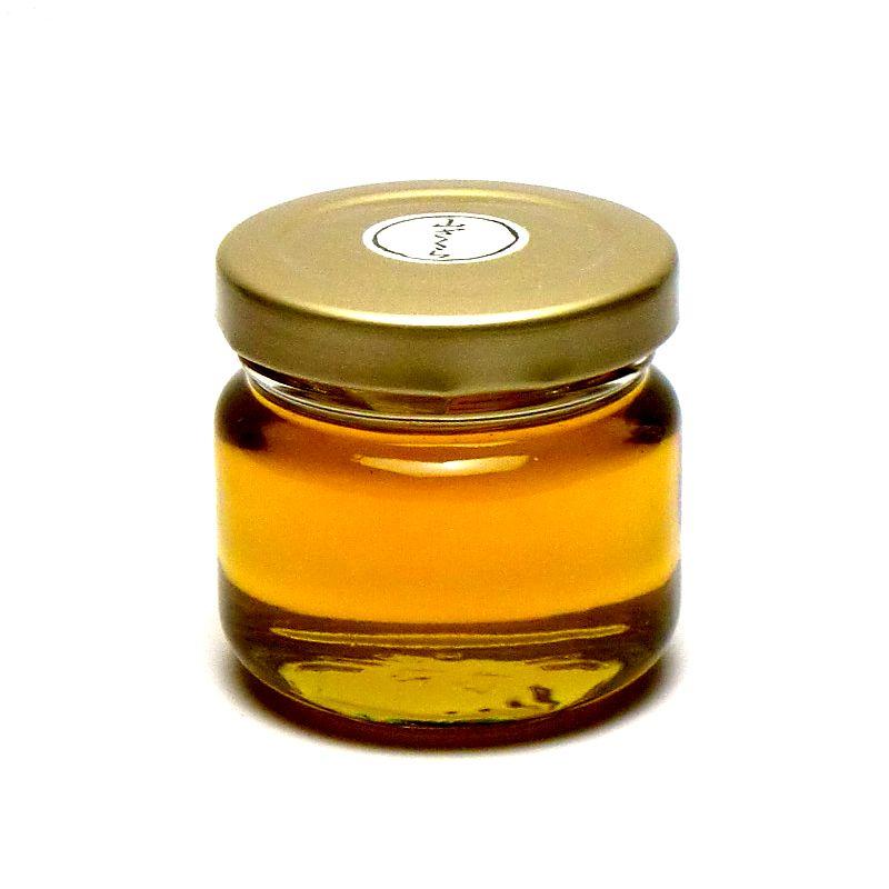 国産はちみつ 山ざくら 90g つくし村の生蜂蜜 国産ハチミツ