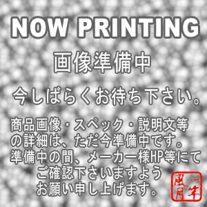 ロデオクラフト ミニステッカーセット グリーン【RCP】