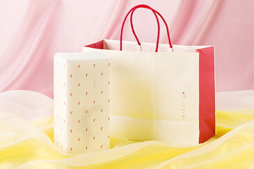 ≪感謝≫贈答用トイレットペーパー ちょっとしたお礼に。ご挨拶 プチギフト 出産内祝い 結婚内祝い うさぎ2ロール赤箱ギフトボックス入 【うさぎ専用紙袋は別売りです】