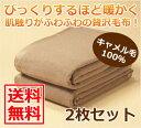 ≪送料無料 !≫ キャメル毛布 2枚セット 【ポイント10倍!】
