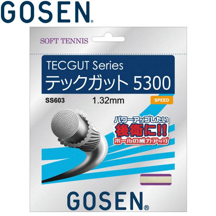テニス, ガット  TECGUT 5300 SS603-RE