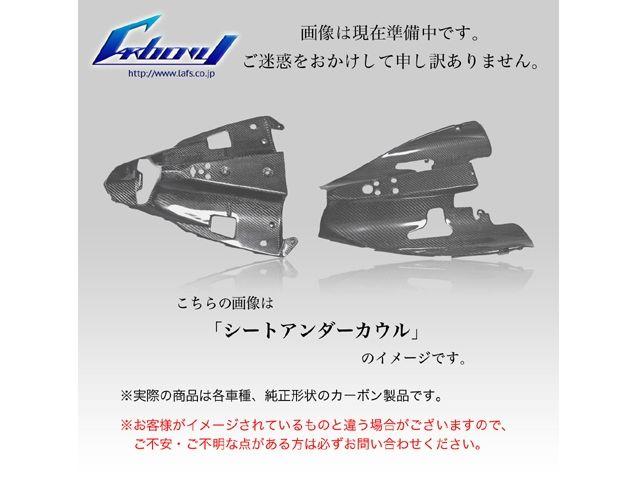 送料無料 カーボニー ニンジャZX-10R カウル・エアロ ZX-10R 08-10年用 カーボン テールアンダーカウル 平織り ツヤ無し