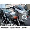 world walk 汎用ビキニカウル DS-01 typeR(シルバー3) XJR1300/400R