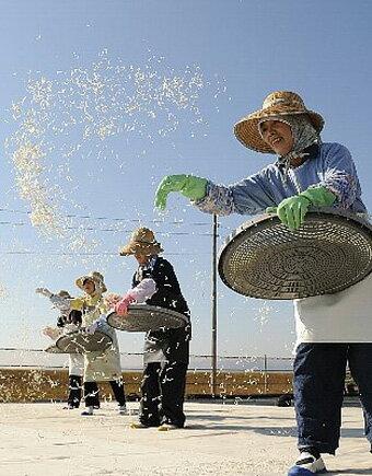 魚介類・水産加工品, 生ちりめん・生しらす 4