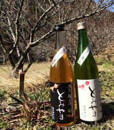 梅酒 梅の酒 とみやま ほんのり辛口 高知 富山 藤娘酒造 日本酒 720ml 瓶