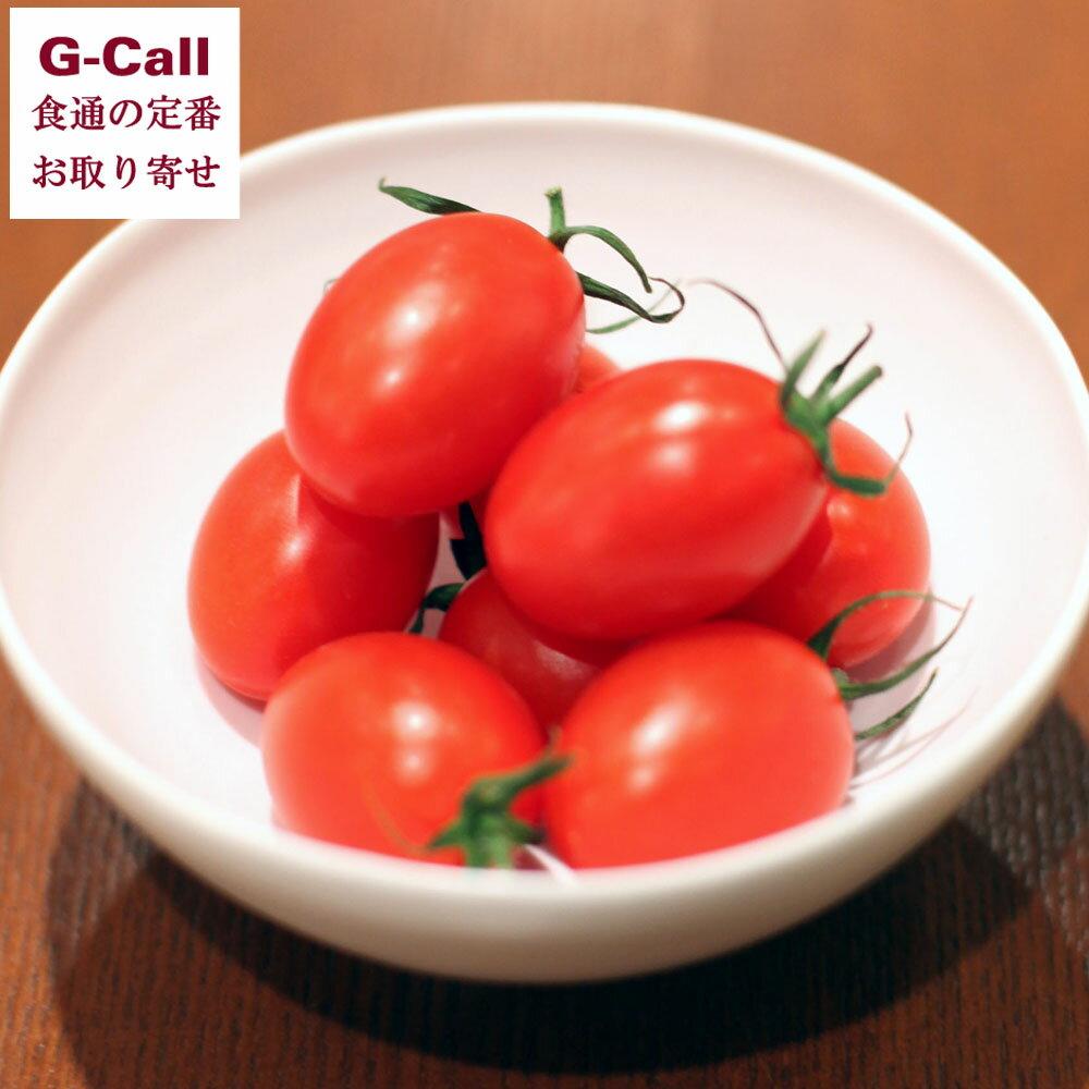 ミニトマトアイコ&ラブリーさくら約800g高知土佐ファーム輝NHKあさイチで紹介フルーツトマト