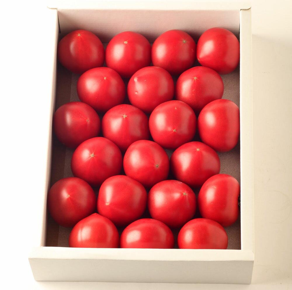 リサフルーツトマト1kgおかざき農園高知Lisaフルーツトマト化粧箱贈答岡崎農園