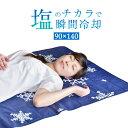 ★クリアランス★ 【塩の冷却マット】 瞬間冷却 敷きパッド ...
