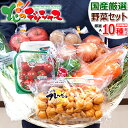 【出荷中】おうちでグルメを満喫 国産 おまかせ 野菜セット ...