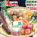 【出荷中】国産 おまかせ 野菜セット B (果物1品+野菜9種類/約7……
