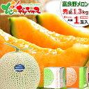 【送料無料】静岡産マスクメロン 1玉ギフト箱 (中玉)