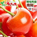 【予約】お中元 送料込み ギフト 北海道産 さくらんぼ 南陽 1kg (秀品/2L以上/500g×2 ...