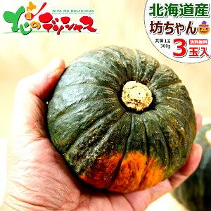 【出荷間近】北海道産 坊ちゃんかぼちゃ 3玉入り (1玉 300g) かぼちゃ カボチャ 南瓜 坊ちゃん 野菜 秋野菜 グルメ 北海道 送料無料 ハロウィン お取り寄せ