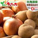 【好評出荷中】北海道産 越冬 じゃが玉 10kg Dセット (JA共撰/インカのめざめ7kg・玉ねぎ3kg) 野菜 野菜...