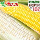 【予約】北海道産 とうもろこし 選べる10本セット黄 白 生 甘い コーン スイートコーン フルーツコーン ...