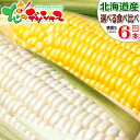 【予約】北海道産 とうもろこし 選べる6本セット黄 白 生 甘い コーン スイートコーン フルーツコーン ...