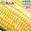 【予約】北海道産 とうもろこし ゴールドラッシュ (10本) 黄 生 甘い コーン スイートコーン フルーツコ...