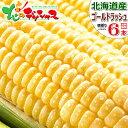 【予約】北海道産 とうもろこし ゴールドラッシュ (6本) 黄 生 甘い コーン スイートコーン フルーツコ...
