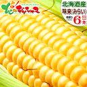 【予約】北海道産 とうもろこし 味来 (6本) 黄 生 甘い コーン スイートコーン フルーツコーン トウモロ...