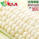 【予約】北海道産 とうもろこし ホワイトショコラ (10本) 白 生 甘い コーン スイートコーン フルーツコ...